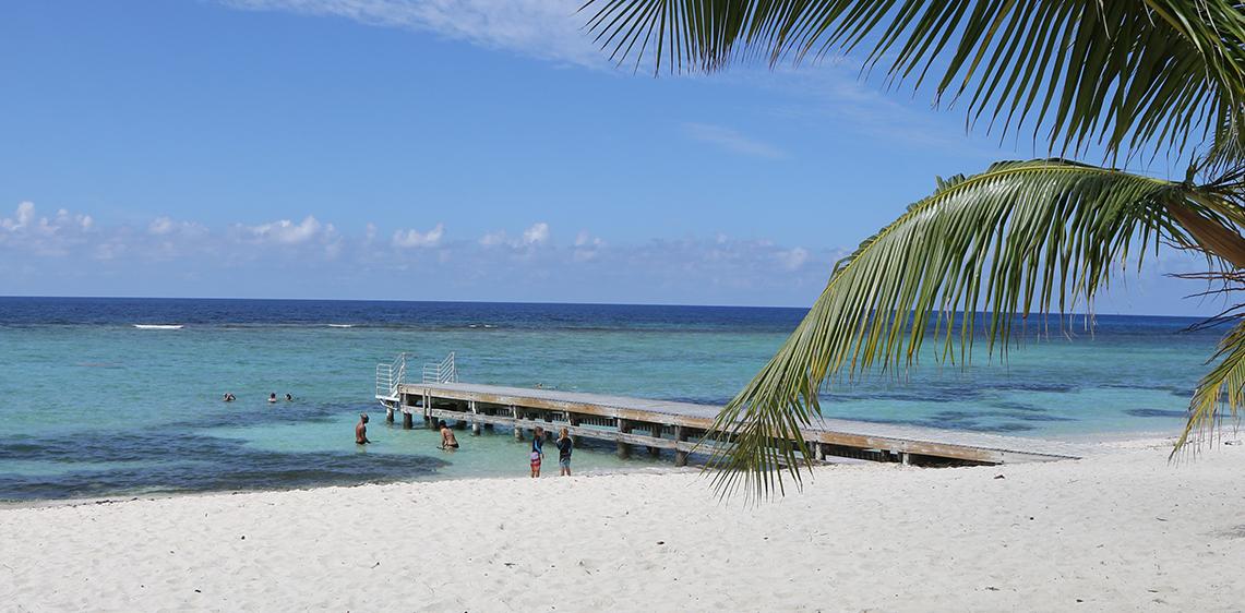 Grand Caymancayman Bratle Cayman