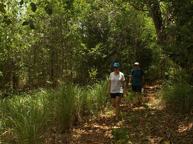 Heavenly escape: Mastic Trail