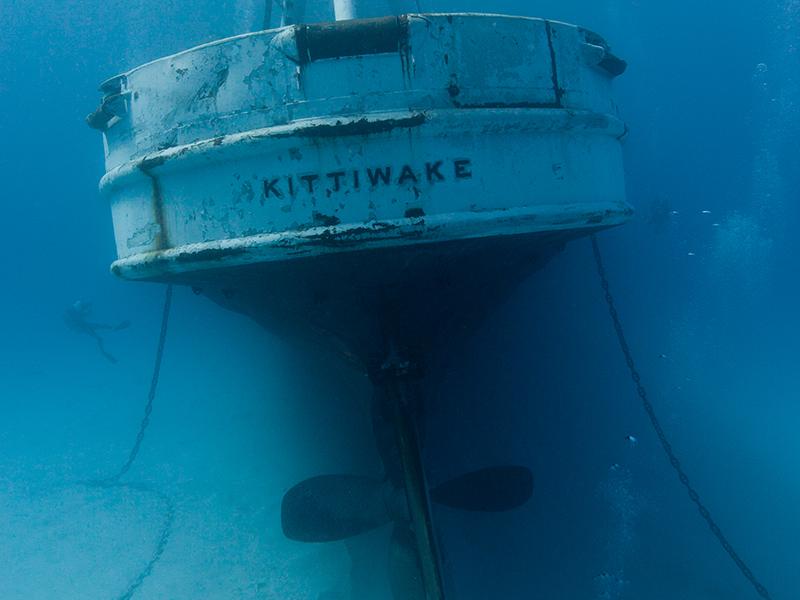 Explore the fascinating shipwreck of Kittiwake