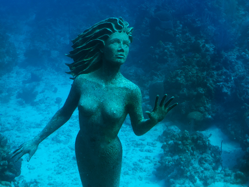 Dive deep and discover Grand Cayman's bronze beauty