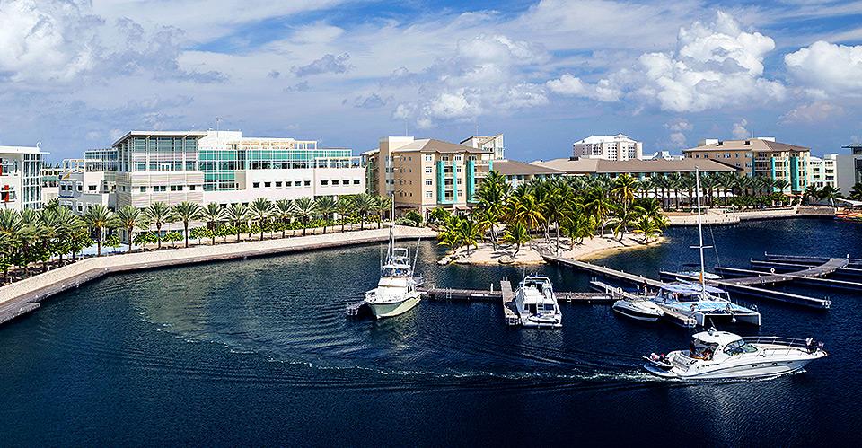 Cayman Billfish Rundown