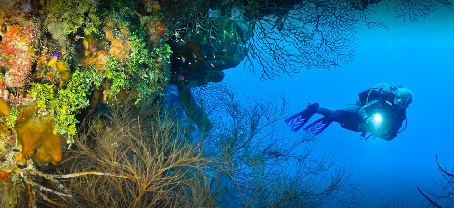 Dive Itineraries